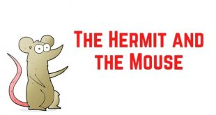 The Hermit and the Mouse