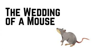 The Wedding of a Mouse